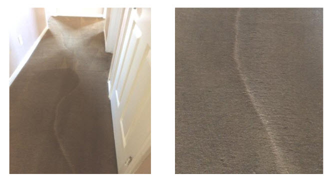 Carpet Traffic and Wear Patterns